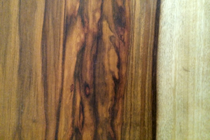 Snakewood/ Ojoche sample