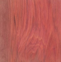 Redheart/ Piedrilla sample