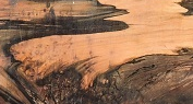 Tercio Pelo/ Dante Plomillo Wood sample