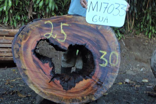 M17033RRO
